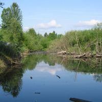Minthorn Wetland, Милуоки