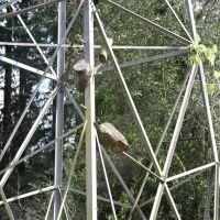 Logs on a Power Tower, Милуоки