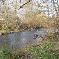 Johnson Creek In the Park, Милуоки