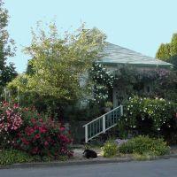 Tanglevine Cottage, Sellwood, Милуоки
