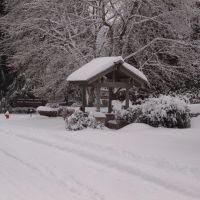 Durham Street in the Snow, Освего