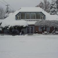 Lake Oswego in the Snowstorm of 2008, Освего