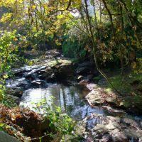 Springfield Millrace Falls, Спрингфилд