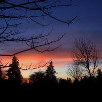 Sunset 1-15-2008, Хазелвуд