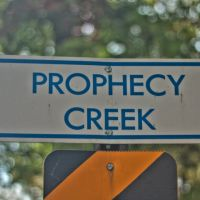 Prophecy Creek, Амблер