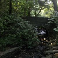 Mill Creek tributary near Cherry Lane, Wynnewood, PA, Ардмор