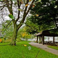 Spring Creek, Бала-Кинвид