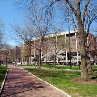 Penn campus in the early spring, Белмонт