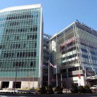 the Childrens Hospital of Philadelphia, Белмонт