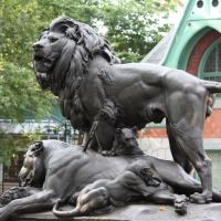 Philadelphia Zoo Lion sculpture, Белмонт