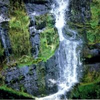 Canonteign Falls Devon 2, Бервин