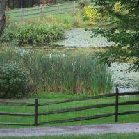Jenkins Arboretum, Бервин
