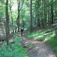 Girl Scout Hill, Бетел-Парк