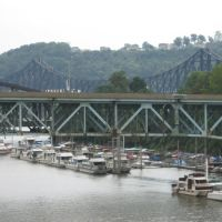 bridges, Бивер