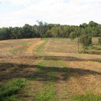Meadow trail at Pennypack Watershed, Брин-Атин