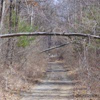 Toftrees Trail, Весливилл