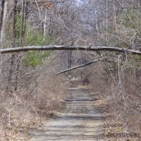 Toftrees Trail, Вест-Вью