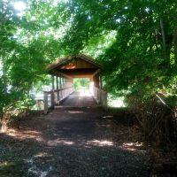 Robbins Trail, Данвилл