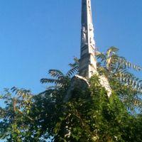 Mount Moriah Cemetery, Дарби