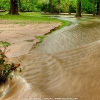 Kerr Park - Flooded Bridge, Даунингтаун