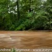 Kerr Park Flooding - Post Hurricane Irene, Даунингтаун