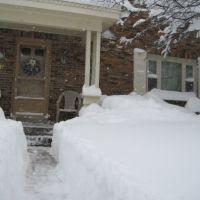 Too Much Snow, Дормонт