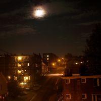 Annex Full Moon, Дормонт