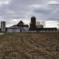 Farm, Ист-Норритон