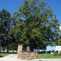 Norris City Cemetery, Ист-Норритон