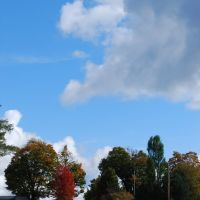 Fall View of Kinter Hill Road, Кембридж-Спрингс