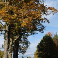 Fall View of Mount Pleasant Road, Кембридж-Спрингс