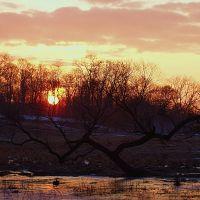 Spring Sunrise, Кембридж-Спрингс