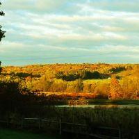 Sunny autumn morning., Кембридж-Спрингс