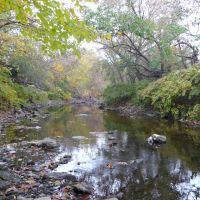 Creek behind apartments in Darby, Колвин