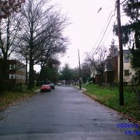 Beechwood Ave, facing Woodlawn ave., Коллингдейл