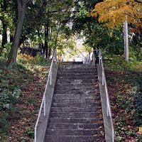 Steps to go to Crafton Park, Крафтон
