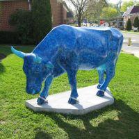 Moo Blue (1), Кэмп-Хилл