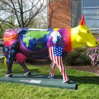 Space Cow (1), Кэмп-Хилл