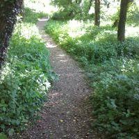 Lemoyne Path 3, Кэмп-Хилл