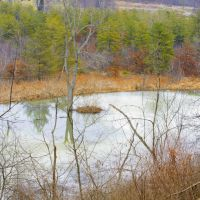 pond, Лангелот