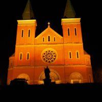 St. Vincent Basilica, Латроб
