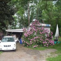 Home of WildLatinLLC, Латроб