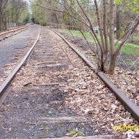 Abandoned Siding, Линнтаун