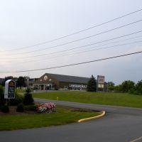 Lewisburg Builders Supply Co, Линнтаун