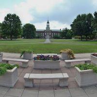 Bucknell University, Линнтаун