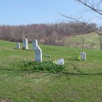 Rose Graveyard, Марианна