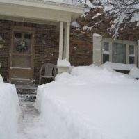 Too Much Snow, Маунт-Лебанон