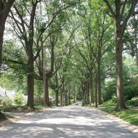 Austin Avenue, Маунт-Лебанон