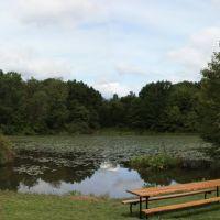Garden Pond Panorama, Меридиан