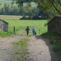 ChesLen Preserve, Модена